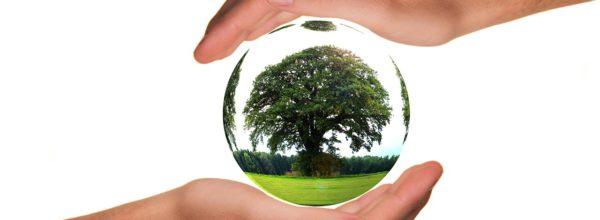 PROMOCJA! SZKOLENIE – PEŁNOMOCNIK iAUDYTOR WEWNĘTRZNY – ISO 14001:2015